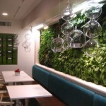 casa-b-restaurant2