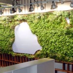 Central-Park-Green-Wall